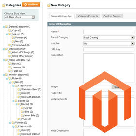 Esportare le categorie di Magento in un file CSV
