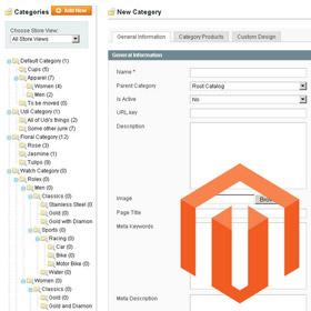 Esportare le categorie di Magento in un file CSV