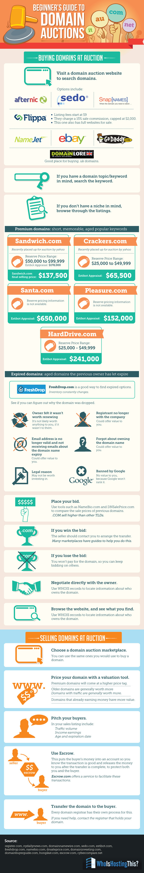 Infografica aste domini