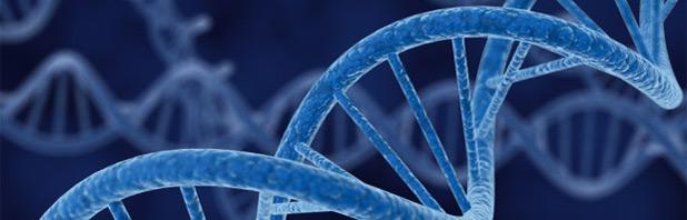Google Baseline Study per mappare il genoma umano