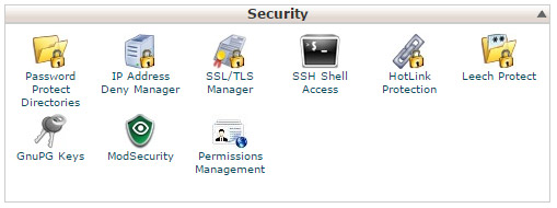 cPanel Security