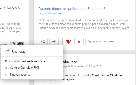 raccolte di Google Plus 6