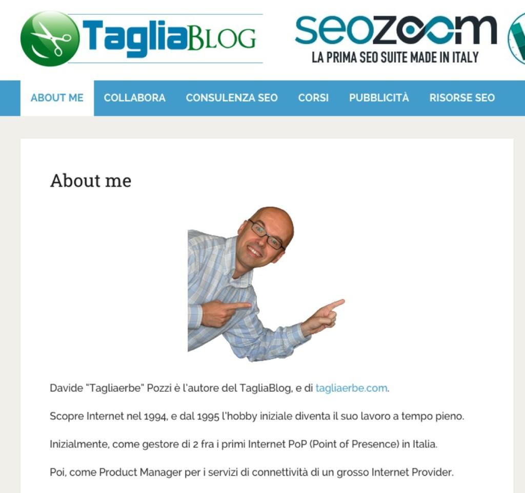 feed seo tagliablog