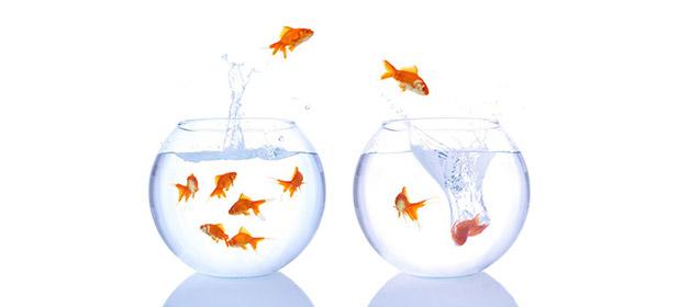 Guida alla Lead Generation: usabilità del sito (1)