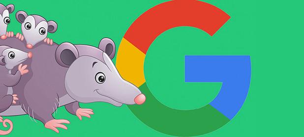 Quali sono le novità introdotte da Google Possum